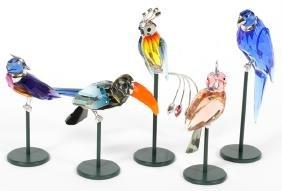 Swarovski Crystal Tropical Birds Five
