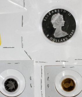 Rare 1989 Maple Leaf Proof Coin-set