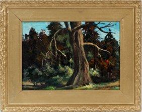 Maurice Braun Oil On Artist Board