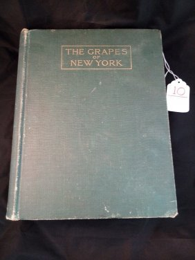 The Grapes Of Ny Book