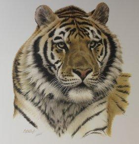 Siberian Tiger (head) By Doheleech