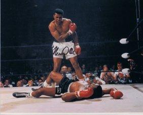 Muhammad Ali - Peterson Very Rare 8 X 10 W/ Certificate