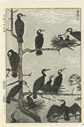 Kasamatsu Shiro - Nesting Cormorants 1960