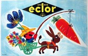 Eclor Graines