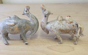 Pair Of Sancai Glass Camel. Tang Period