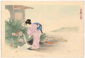 Woman Washing; 1000 Kinds Of Flowers