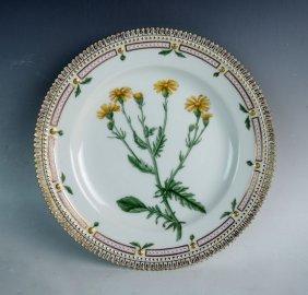 Flora Danica Senecio Jacobaea Plate