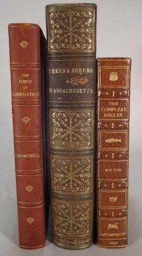 Book Lot: Walton, Churchill, Et Al