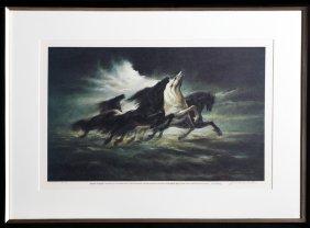 Lumen Martin Winter, Steeds Of Apollo (apollo Xiii)