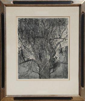 Leonard Baskin, Tree, Etching