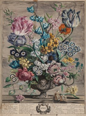 Furber (robert) - Twelve Months Of Flowers: February,