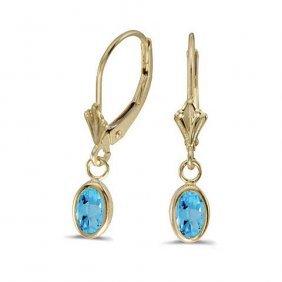 14k Yellow Gold 1.14 Ctw Blue Topaz Earrings