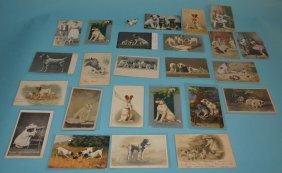 25 Jack Russel Postcards An Austrian Bronze