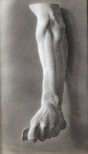 Gustav Wendling, Zeichnung Nach Gips
