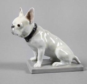 Heubach Bulldogge