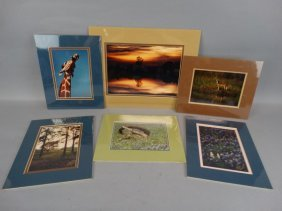 Lot Of 6 Signed Outdoor Photos By Wayne Smith