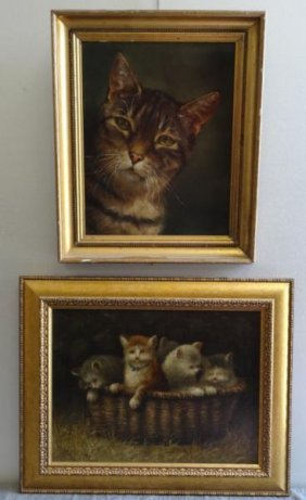 Two Oils Of Cats. 1 Carolyn DROGE Oil On Panel