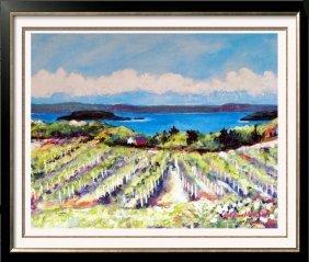 1989 Nell Revel-smith Vineyards Landscape