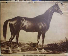 """the Celebrated Horse Lexington"" & ""new England-winter"