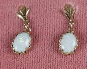 """14kt"" Yellow Gold Pair Of Opal Earrings"