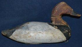 Canvasback Drake, Bailey Moltz Circa 1940