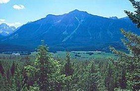 GOV: CANADA LAND, $14,681@$159/mo BRITISH COLUMBIA!