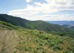 GOV: NV LAND, 40 AC. $19,791@$227/mo - HUMBOLDT COUNTY!