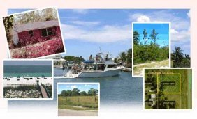 GOV: FL LAND, 1.25 AC HUNTERS PARADISE - STRAIGHT SALE!