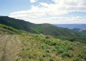 GOV: NV LAND, 51.33 AC. $21,481@$249/mo LARGE ACREAGE!