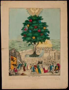 Lithograph Tree Of Live