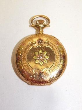 14kt Waltham Tri-color Gold 12s Hunters Case Pocket