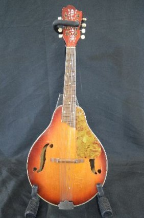 Amplificator Mandolin With Case