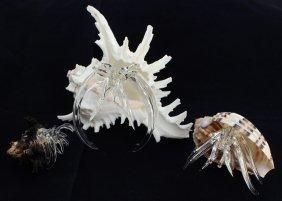 Blown Glass Hermit Crab Set
