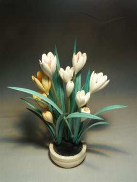20thc. Tinted Ivory Bulb Plant