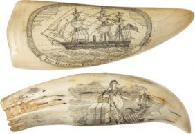 Lot Of Two Scrimshawed Whale Teeth.