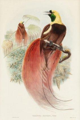 William Matthew Hart (british, 1830-1908) Paradi