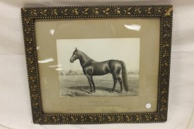 Framed Painting Signed A.j. Schultz Of The Horse